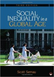 social-inequality-in-a-global-age