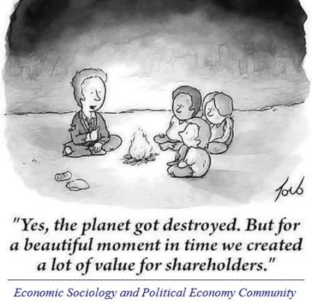 shareholder value maximization
