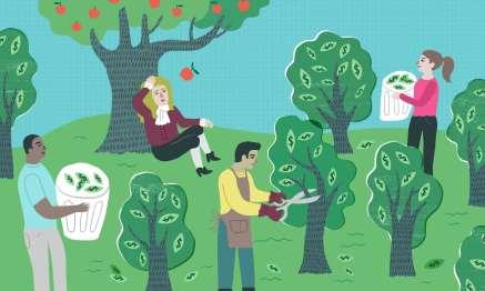 ecology economy economics
